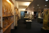 哺乳類のペニスを収集することを目指す『男性器博物館』( アイスランド)