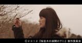 最愛の夫を事故で失ったヒロインを演じる臼田あさ美