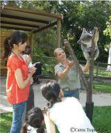 飼育体験をしながら、自然に英会話を学ぶことができる。