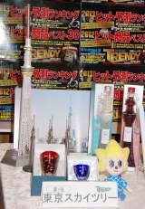 「2012ヒット商品ベスト30」で第1位に輝いた東京スカイツリー (C)ORICON DD inc.