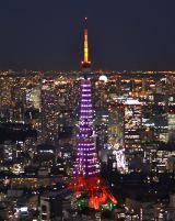 桜色に染まった東京タワーが、受験生にエール (C)ORICON DD inc.