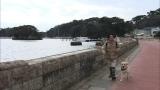 3月6日放送の『まさはる君が行く!ポチたまペットの旅』で宮城・松島を訪れた旅犬まさはると松本君(C)テレビ東京