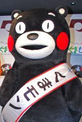 Twitterで乗っ取り被害に遭いアカウントを変更した熊本県の人気キャラクター・くまモン (C)ORICON DD inc.