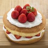 焼き菓子の手づくりキット『自分でつくる ホールケーキ』 税込550円