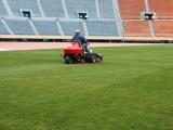 青い芝の刈込作業をする専門スタッフ・グラウンドキーパー(現在の様子)
