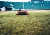 凸凹になった芝生を転圧で平らにする作業(以前の様子)