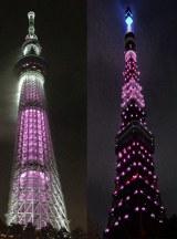 ピンクリボンキャンペーンの一環で東京スカイツリー(左)、東京タワー(右)もピンク色にライトアップ (C)oricon ME inc.