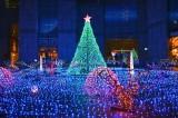 カレッタ汐留でカレッタプラザで15日よりスタートするクリスマスイルミネーション『Caretta Illumination 2013「魚たち はクリスマスの夢をみる White X'mas in the sea」』 (C)oricon ME inc.