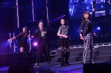 『Hello! Project COUNTDOWN PARTY 2013 〜 GOOD BYE & HELLO! 〜』に出演したメロン記念日