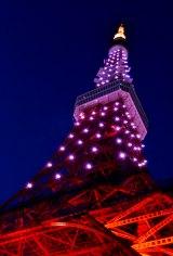 桜色にライトアップした東京タワーで、受験生にエールを送る。 (C)oricon ME inc.