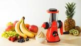 フルーツのみで作るアイスメーカー『フルーツアイスメーカー DIFI-14』(ドウシシャ) 税別3980円