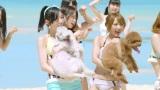 犬を抱きかかえて大喜び(左から)松井珠理奈、��橋みなみ(AKB48「ラブラドール・レトリバー」MVカット)