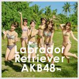 AKB48の新曲「ラブラドール・レトリバー」初回盤Type-K