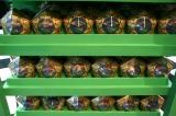 15日にオープンするUSJ「ハリポタ」新エリアでは魔法界の人気お菓子『蛙チョコレート』も用意 (C)oricon ME inc.