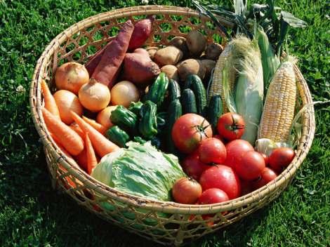 若い腸年齢を維持させるには「発酵食品」と「食物繊維」が重要