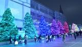新宿テラスシティのイルミネーション、今年のテーマは「きらめくヒカリのまち」(東京・新宿/渋谷)