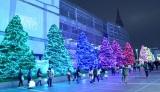 新宿テラスシティのイルミネーション『OMOHARA WHITE CHRISTMAS 2014』 (C)oricon ME inc.