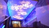 102年前の遺構階段を初ライティング〜マーチエキュート神田万世橋 雪をイメージしたライティングの「1935階段」(C)oricon ME inc.