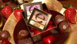 バレンタインシーズンに向け常盤薬品工業が発売する限定品『デュアルアイシャドウ N DU06(ストロベリーショコラ)』