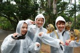 石垣島で猿に囲まれる。YouTube上で展開するE-girlsの人気動画番組『E-girls movies!!』第2弾沖縄編の配信がスタート(C)テレビ朝日