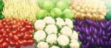 アニメ『食戟のソーマ』2015年春放送開始。プロモーション映像の画面キャプチャー(C)附田祐斗・佐伯俊/集英社・遠月学園動画研究会
