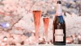 桜の名所でオーストラリアのプレミアム スパークリングワイン『シャンドン ロゼ』を楽しめる「お花見CHANDON」、今年も3月初旬より開催!