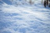 雪による損害を補償する「車両保険」賢い契約法とは?