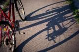 自転車走行上の事故リスクは、大きくわけて3つ。最も大きなリスクと、必要な備えとは?