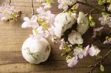 LUSHより桜の季節にピッタリのシャワースクラブが登場!