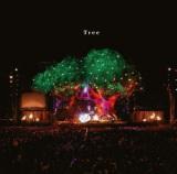 SEKAI NO OWARIはテーマパークのような野外ライブを実施して、ファンタジー的な世界観をうまく伝えている。写真は15年1月14日に発売したアルバム『Tree』