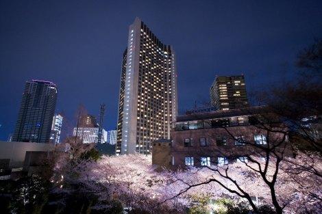 """ANAインターコンチネンタルホテル東京では『さくらまつり2015』を開催(3月14日〜4月15日) """"桜""""をテーマに春らしい食材にこだわった期間限定メニューを提供"""