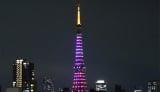 23日夜、東京タワーが東京の桜開花宣言を受けてピンク色にライトアップされた (C)oricon ME inc.