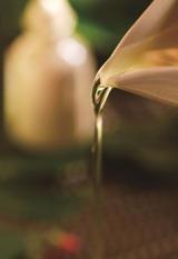 ホテル椿山荘東京が春季プラン『Healing Green 〜都会の森で深呼吸〜』を展開 ロクシタンとのコラボカクテルやスイーツなども楽しめる