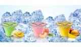 話題のアルコールゼリー『Jellybird(ジェリーバード)』が日本に初上陸