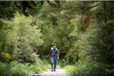 4月19日放送、BSジャパン『藤井フミヤ 絶景トレック! ニュージーランド 世界で一番美しい散歩道』(C)BSジャパン