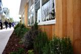 17日オープン「ログロード代官山」内部公開 外にはハーブなど草木がいっぱい (C)oricon ME inc.