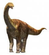 『メガ恐竜展 2015-巨大化の謎にせまる-』