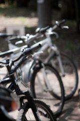 """万が一、自転車事故に遭ってしまったら……。""""自転車保険""""は、どのように役立つ?"""