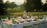 「ワイルド ストロベリー」誕生50周年記念で新作も続々 3月に発売した戸外で楽しむピクニックをイメージの「ワイルド ストロベリー アルフレスコ」