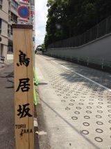 乃木坂46に続く坂道シリーズ第2弾グループは「鳥居坂46」(写真は東京港区の鳥居坂)