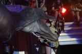 『HKT48全国ツアー〜全国統一終わっとらんけん〜』ファイナルに出演した冨吉明日香 (C)AKS
