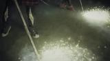 火花を散らす鉄パイプを使ったダンスパフォーマンス