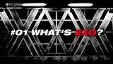 初回放送のテーマは「WHAT'S EXO?」
