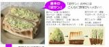 『沼サン 野菜たっぷり!幸せサンドイッチレシピ』(宝島社)が発売されるなど、注目を集めている「沼サン」の作り方