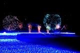 東京ミッドタウン初の夏イルミネーション「SUMMER LIGHT GARDEN(サマーライトガーデン)」が17日より開催 (C)oricon ME inc.