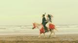 ポニーにまたがり海辺を散歩する2人