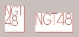 新潟県鳥の「朱鷺」をイメージしてデザインされたNGT48ロゴ