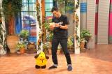 関西テレビ『さんまのまんま』9月5日放送(フジテレビは9月6日放送)(C)関西テレビ