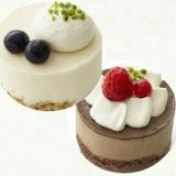 『やさしい豆乳スイーツ レアチーズ風/ショコラ』(税込価格:各380円)