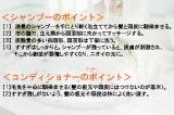 資生堂トップヘア&メーキャップアーティスト・原田忠さんが伝授する、ニオイ防ぐシャンプー&コンディショナーのポイント